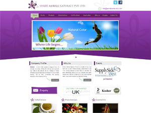 Herbal Extracts Web Design Services in Mumbai
